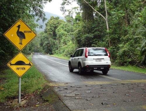 Cairns & Daintree Rainforest, Queensland, Australien