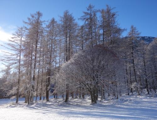 Österreich – Weihnachtstraditionen in Tirol